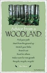 Postcard Advice from a Woodland