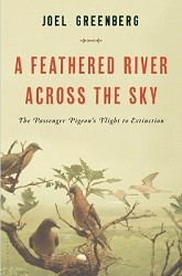 A Feathered River Across the Sky - September 2014