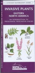 Pocket Naturalist Guide to Invasive Plants of the Eastern US