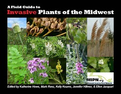 A Field Guide to Invasive Plants of the Midwest