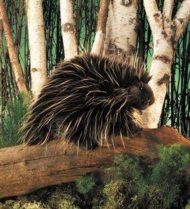 Puppet Porcupine,2378/