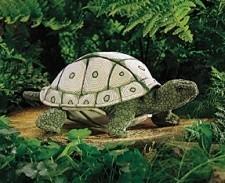 Puppet Tortoise