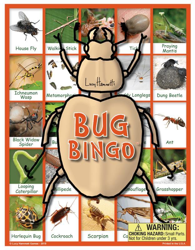 Bug Bingo,2777/