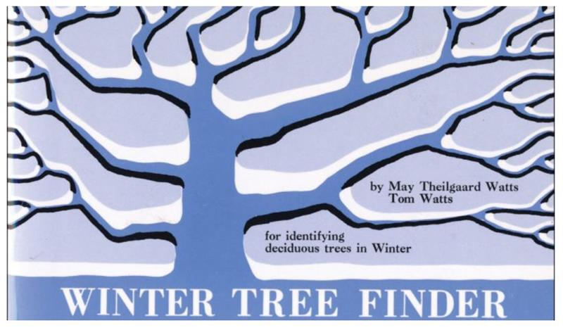 Winter Tree Finder,9780912550039