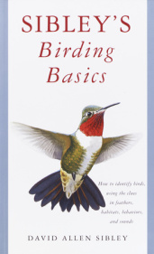 Sibley's Birding Basics,9780375709661