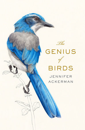 The Genius of Birds,9780399563126
