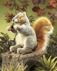 Puppet Grey Squirrel,2553