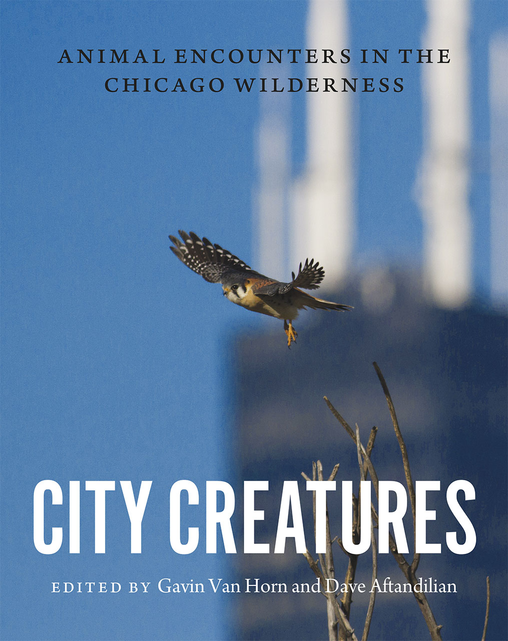 City Creatures: Animal Encounters in the Chicago Wilderness,9780226192895