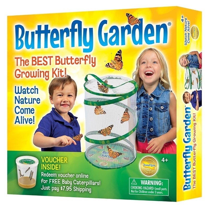Butterfly Garden,1010  (6)