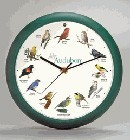 "Bird Clock 13"" Green"