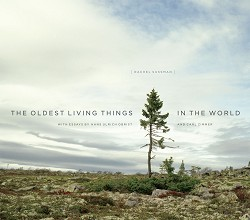 Oldest Living Things in the World, The