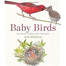 Baby Birds,9780544206700