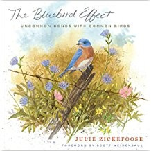 Bluebird Effect,9780547003092