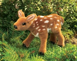 Puppet Fawn,2573