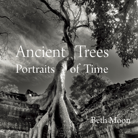 Ancient Trees: Portraits of Time,9780789211958