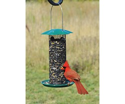 Sunflower Feeder Petite