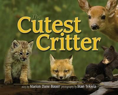 Cutest Critter,9781591932536