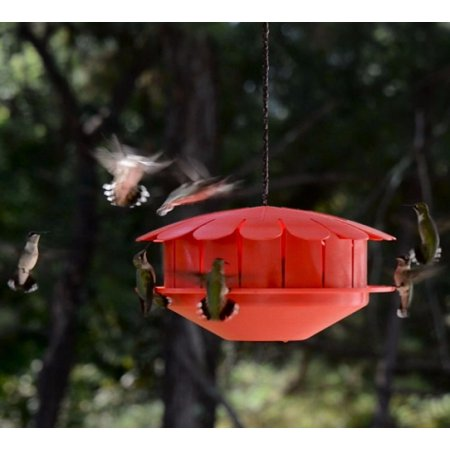 Humm-Bug Feeder,HBHF-1