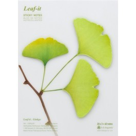 Leaf It Ginkgo Green Large,C209GL002S - XX