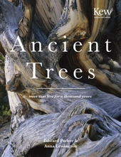 Ancient Trees: Trees That Live for a Thousand Years,9781849940580