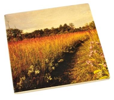 Arboretum Wood Coaster - Prairie