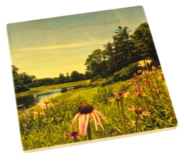 Arboretum Wood Coaster - Meadow Lake in Summer