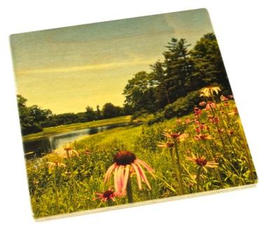 Arboretum Wood Coaster - Meadow Lake in Summer