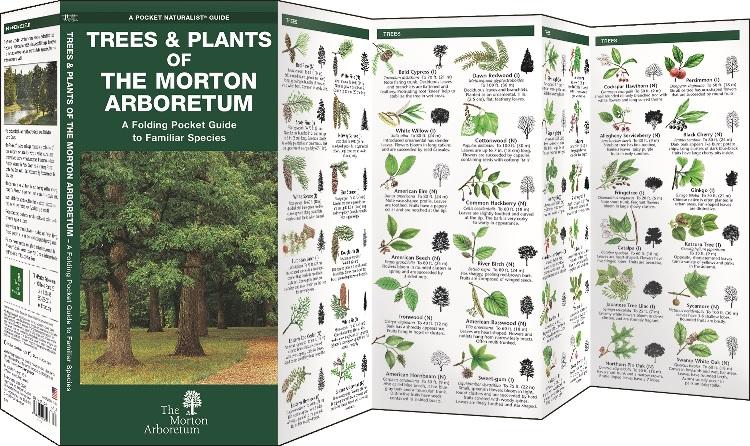 Trees & Plants of The Morton Arboretum: Pocket Guide