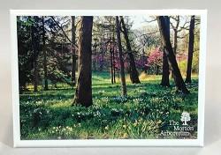 Arboretum Spring Magnet,54197