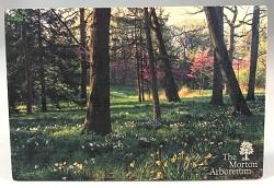 Arboretum Spring Wood Postcard