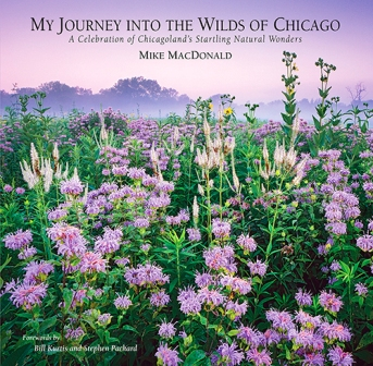 My Journey Into the Wilds of Chicago,9780996311908